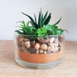 15cm Natural Glass Bowl With Mixed Artificial Succulent Plants