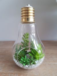 18cm Natural Glass Bulb With Mixed Artificial Succulent Plants
