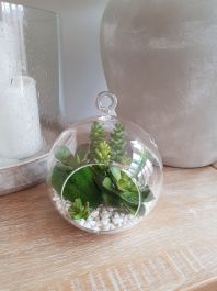 15cm Natural Glass Bubble with Mixed Artificial Succulent Plants