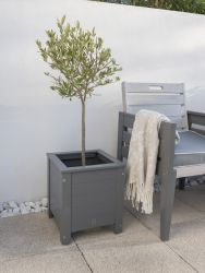 Grigio Wooden Square Planter in Grey