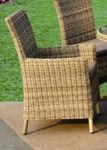 Modena Carver Rattan Chair with Cushion