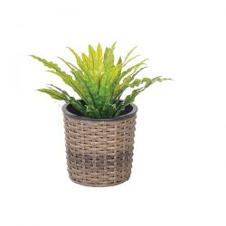 Cozy Bay Round Planter 13cm with Plastic Inlay