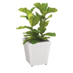 Cozy Bay Set of 4 Square Rattan Planters with Iron Frame with Plastic Inlay