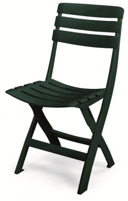 Queen Resin Folding Chair in Forest Green
