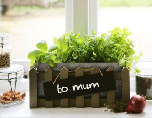Personalisable Kitchen Herb Planter with Chalk Pen