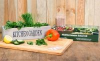 Grow Your Own Mediterranean Salad Garden Kit - Kitchen Windowsill Planter with 5 Seeds and Compost