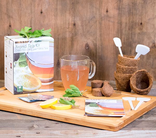 Aroma Tea - Grow Your Own Herb Garden Kit - 3 Aromatic Teas to Grow