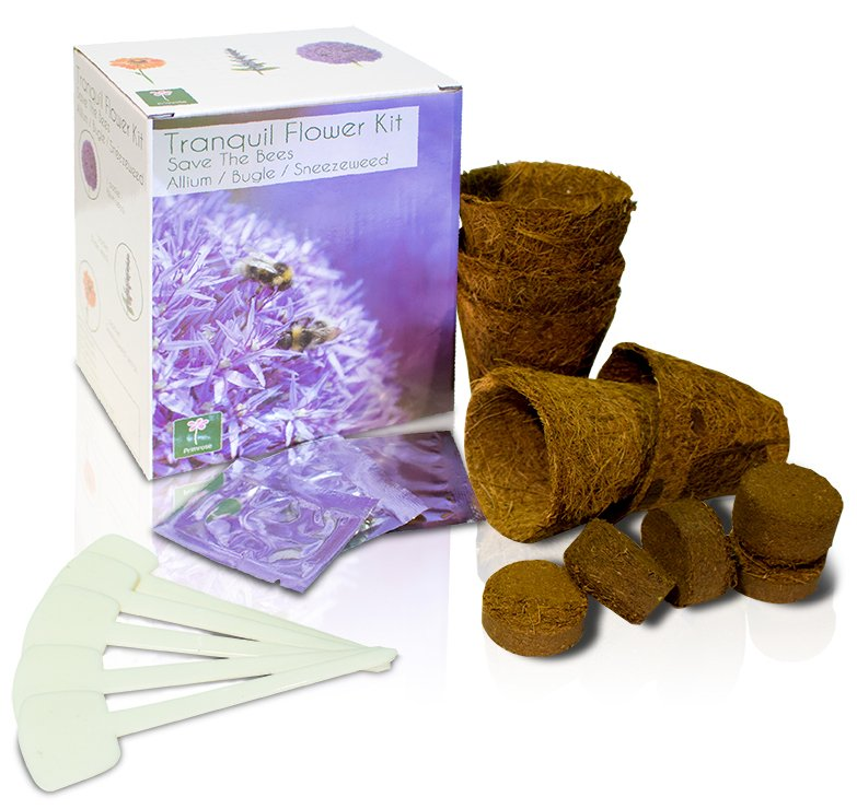 Tranquil Flower - Grow Your Own Herb Garden Kit - 3 Beautiful Flowers to Grow