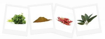 Tandoori - Grow Your Own Herb Garden Kit - 4 Flavoursome Herbs & Spices to Grow