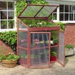 3ft 11in x 2ft Extra Large Wooden Growhouse