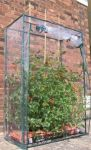 4ft 11in x 3ft 3in Tomato Growbag Greenhouse