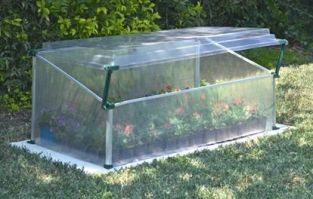 Botanico Cold Frame - Single