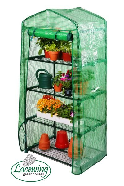 Lacewing™ 2ft 3in x 1ft 7in Reinforced 4 Tier Mini Greenhouse