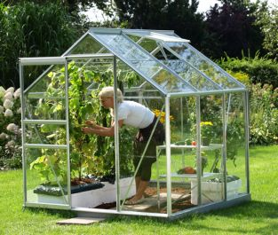Venus 3800 Anodised Aluminium Greenhouse 6ft x 6ft