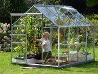 Venus 5000 Anodised Aluminium Greenhouse 6ft x 8ft