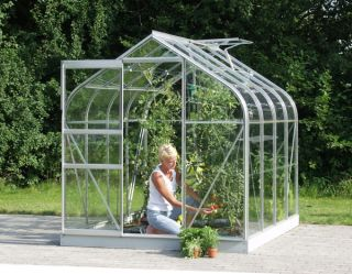 Orion 3800 Anodised Silver Greenhouse 6ft x 6ft