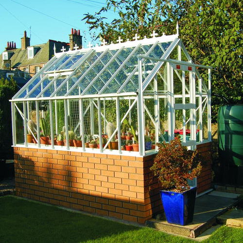 Elite Thyme Dwarf Wall 6ft x 6ft Greenhouse