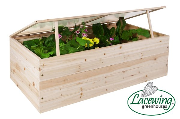 Lacewing™ 4ft x 2ft Wooden Cold Frame