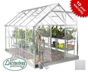 Lacewing™ 6ft x 10ft Deluxe Aluminium Frame Greenhouse with Toughened Glass