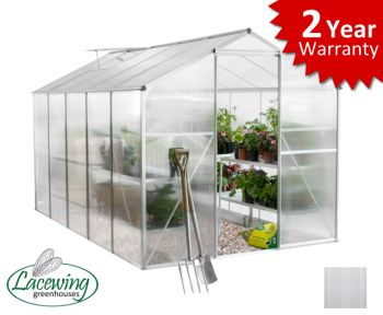 Lacewing™ 6ft x 10ft Essential Silver Aluminium Frame Greenhouse without Base