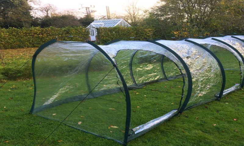 Tall Polytunnel 5m