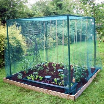 Heavy Duty Fruit Cage 4m x 2m x 2m