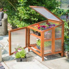W80cm (31in) Hardwood Cold Frame Greenhouse FSC® by Rowlinson®
