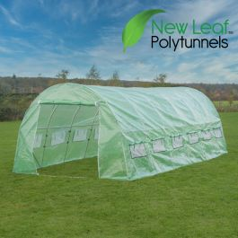 6m x 3m (19ft 8in x 9ft 10in) Premium Polytunnel  Galvanised Frame by New Leaf™