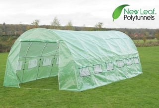 6m x 3m (19ft 8in x 9ft 10in)  Polytunnel  Galvanised Frame by New Leaf™