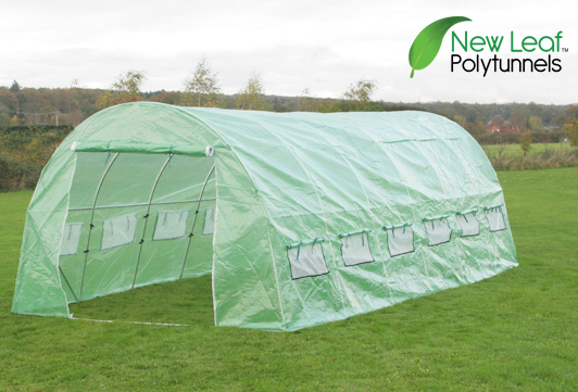 New Leaf™  Polytunnel 6m x 3m (19ft 8in x 9ft 10in)
