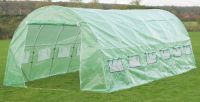 New Leaf Polytunnel 6m x 3m (19ft 8in x 9ft 10in)