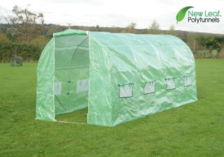 5m x 2m (16ft 5in x 6ft 7in) Polytunnel Galvanised Frame by New Leaf™