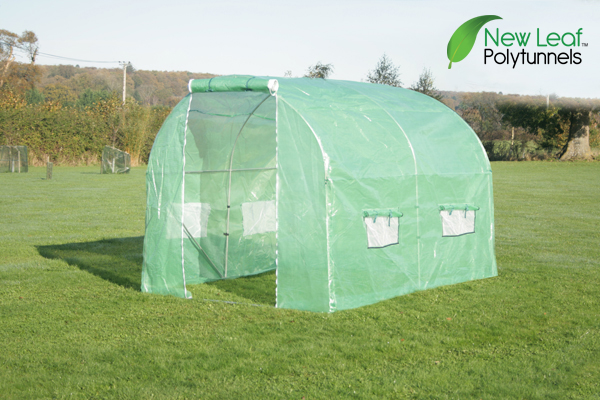 3m x 2m (9ft 10in x 6ft 7in) Polytunnel Galvanised Frame by New Leaf™
