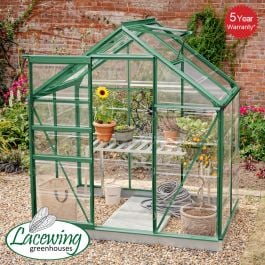 Lacewing™ 6Ft x 4Ft  Crystal Clear Polycarbonate Greenhouse Green Frame