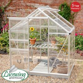 Lacewing™ 6Ft x 4Ft Crystal Clear Polycarbonate Greenhouse Silver Frame