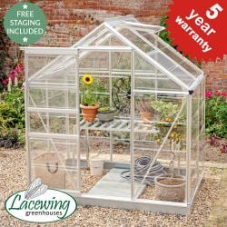 Lacewing™ 6Ft x 4Ft Crystal Clear Polycarbonate Greenhouse in Silver with Base