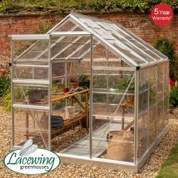 Lacewing™ 6Ft x 8Ft Cristal Polycarbonate Greenhouse Silver Frame