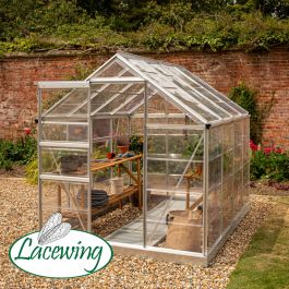 Lacewing™ 6Ft x 8Ft Cristal Polycarbonate Greenhouse