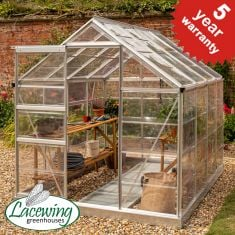 Lacewing™ 6Ft x 8Ft Crystal Clear Polycarbonate Greenhouse  in Silver with Base