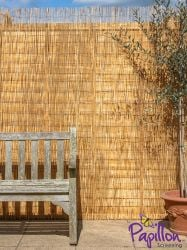 Peeled Reed Natural Fencing Screening 4.0m x 2.0m (13ft 1in x 6ft 7in) - By Papillon™
