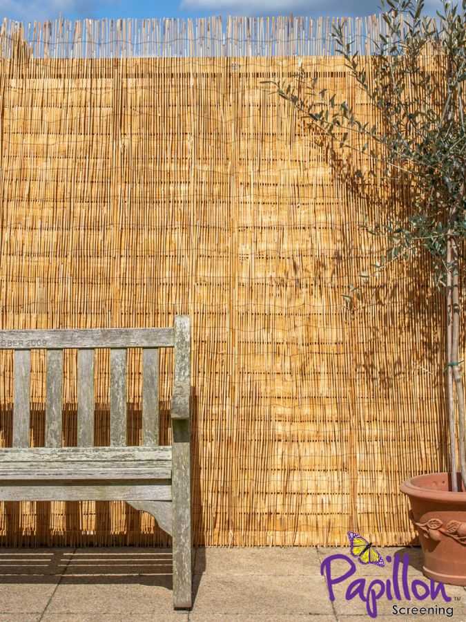 Peeled Reed Natural Fencing Screening 4.0m x 1.2m (13ft 1in x 4ft) - By Papillon™