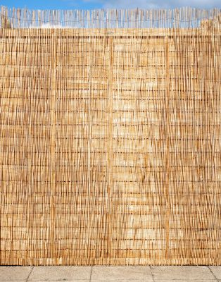 Peeled Reed Natural Fencing Screening 4.0m x 1.5m (13ft 1in x 5ft) - By Papillon™