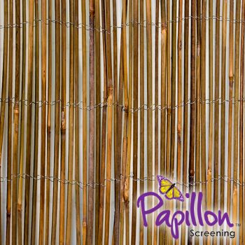 4m x 2m Brown Bamboo Cane Screening by Papillon™