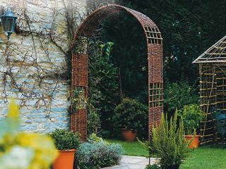 Hazel Rose Arch / Trellis for Climbers