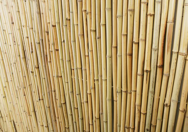 6ft x 6ft Bamboo Fence Panel with Frame by Papillon™