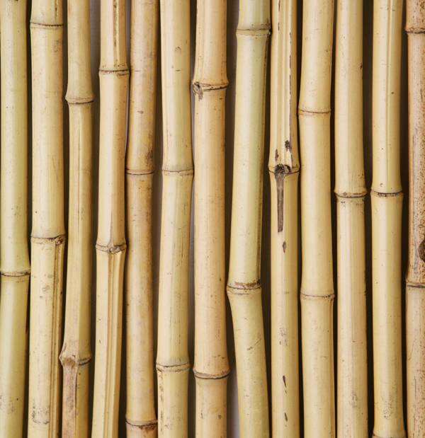 Bamboo Fence Panel with Frame 1.82m x 0.9m (6ft x 3ft) - By Papillon™