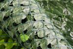 "Papillon� Artificial Screening - Ivy Hedge 3.0m x 1.5m (9ft 10"" x 4ft 11"")"