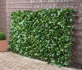 1 x 2m Extendable Artificial Laurel Leaf Screening Trellis - by Papillon�
