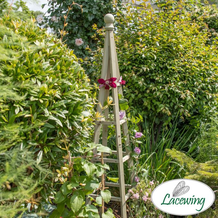 190cm Sage Wooden Obelisk Plant Support by Lacewing™