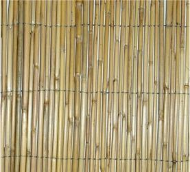 Botanico Reed Screening - 0.9m x 3.8m